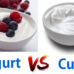 yogurt or curd