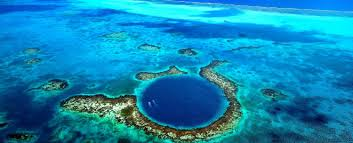 great barrier reef coral beach