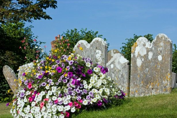 flowers on graves